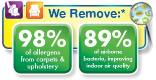 carpet cleaning by Chem-Dry removes 98% of allergens and 89% of airborne bacteria